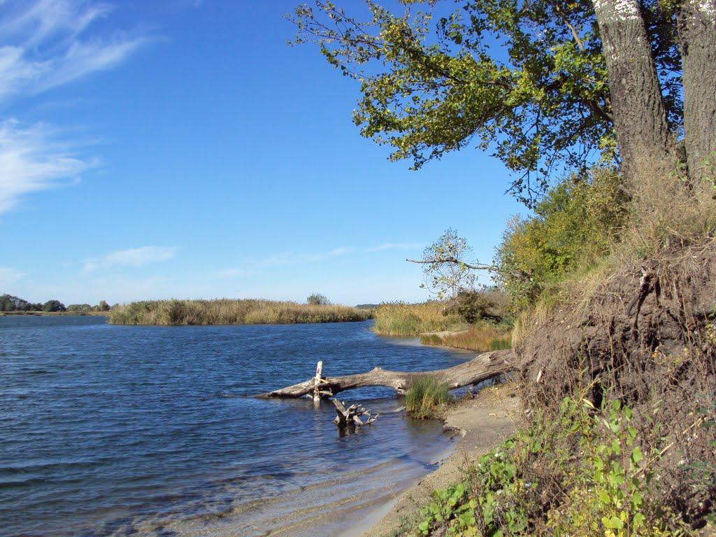 Озеро возле Каменского / фото: mapio.net