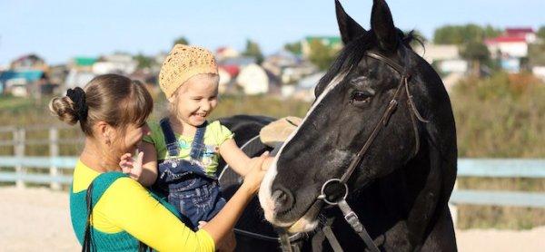 Прогулки на лошадях/ фото: real-vin.com