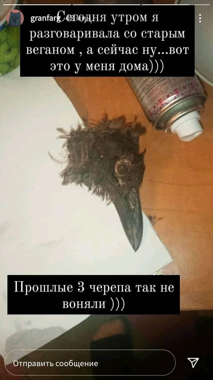 Девочка снова опубликовала жуткую фотографию / фото: fb Мария Матюшенко