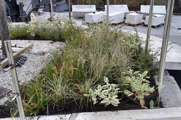 Уличная мебель и декоративные растения: как продвигается ремонт улицы Яворницкого фото 5
