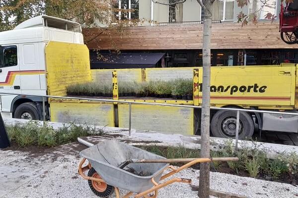 Уличная мебель и декоративные растения: как продвигается ремонт улицы Яворницкого фото 6